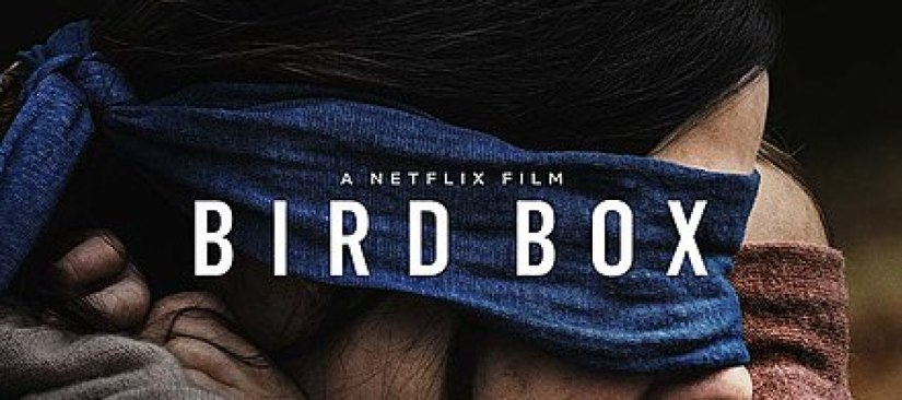 January 19-20. Bird Box, Faith, and a Preview of Romans8.